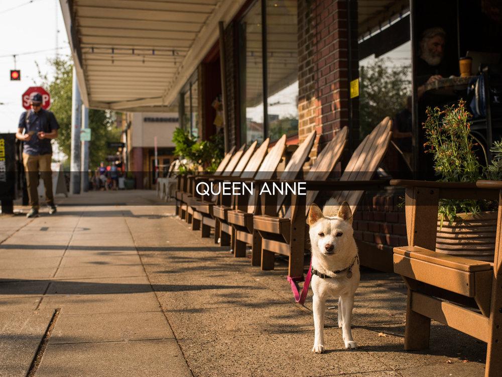 Queen-Anne.jpg