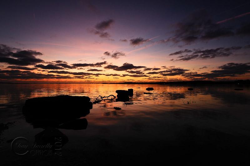 estuary-9518_120202