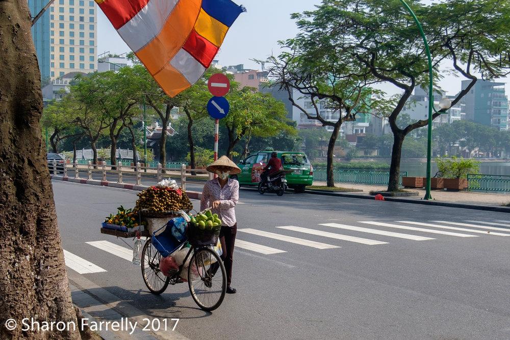 Hanoi-2017-0119-1.jpg