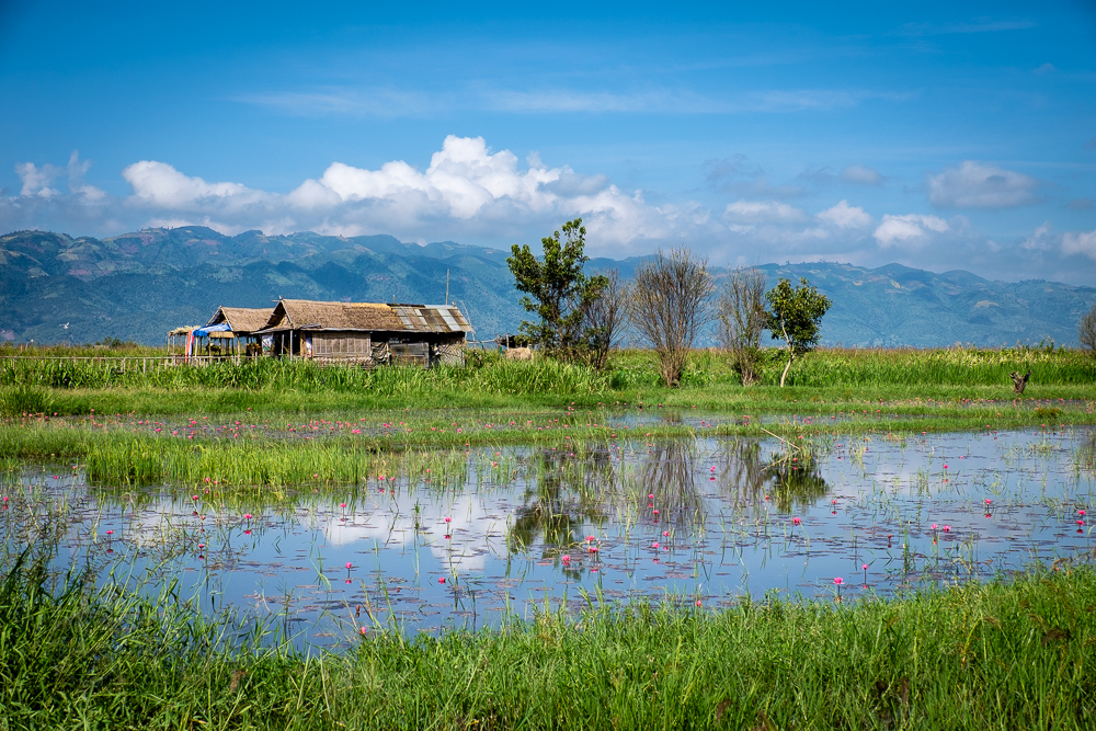 Inle-LakeDay4-1403.jpg