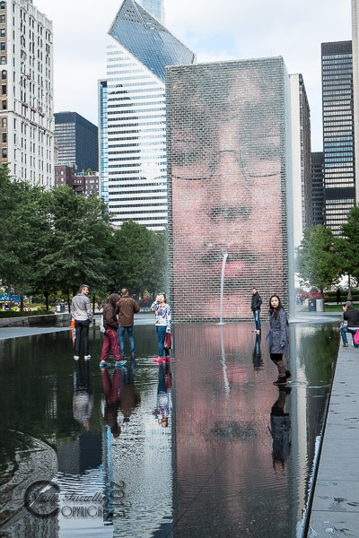 chicago-1444_131022.jpg