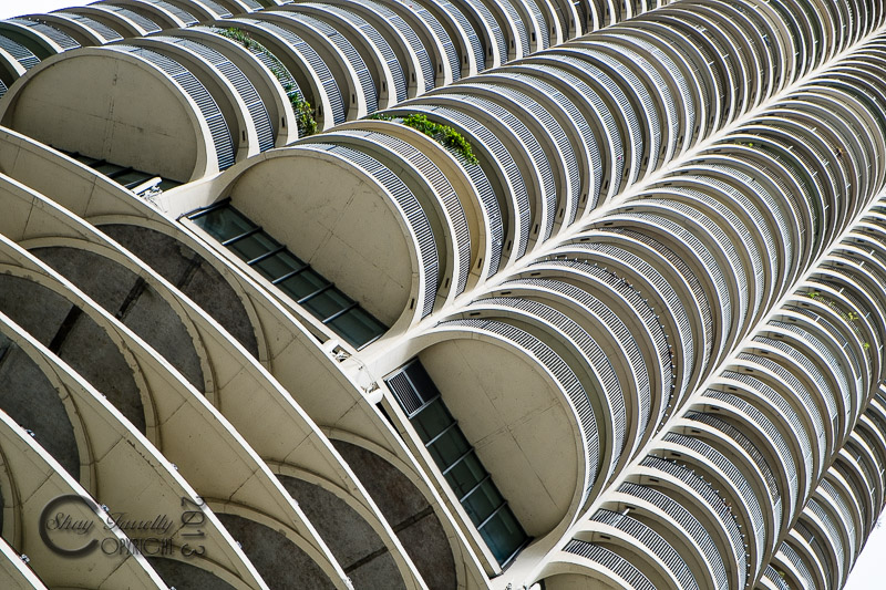 chicago-1195_131020.jpg