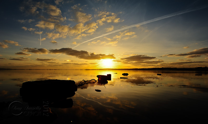 estuary-9904_120202.jpg