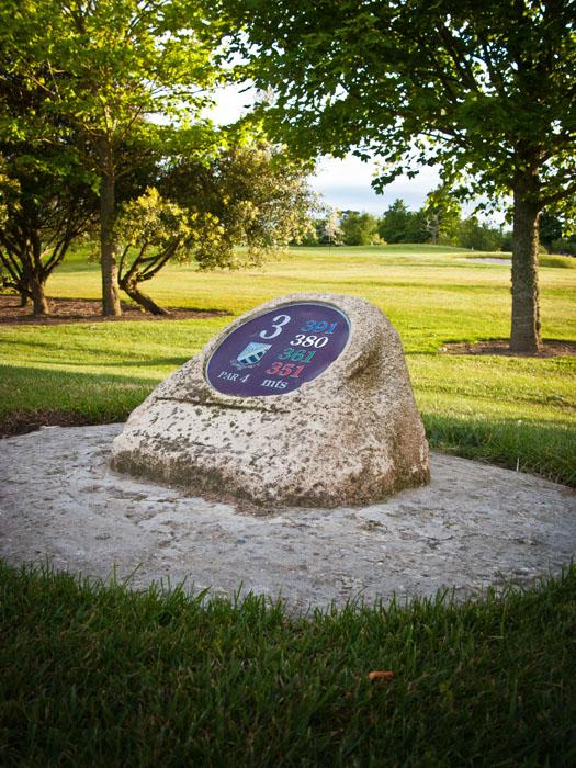 shay-golf-4.jpg