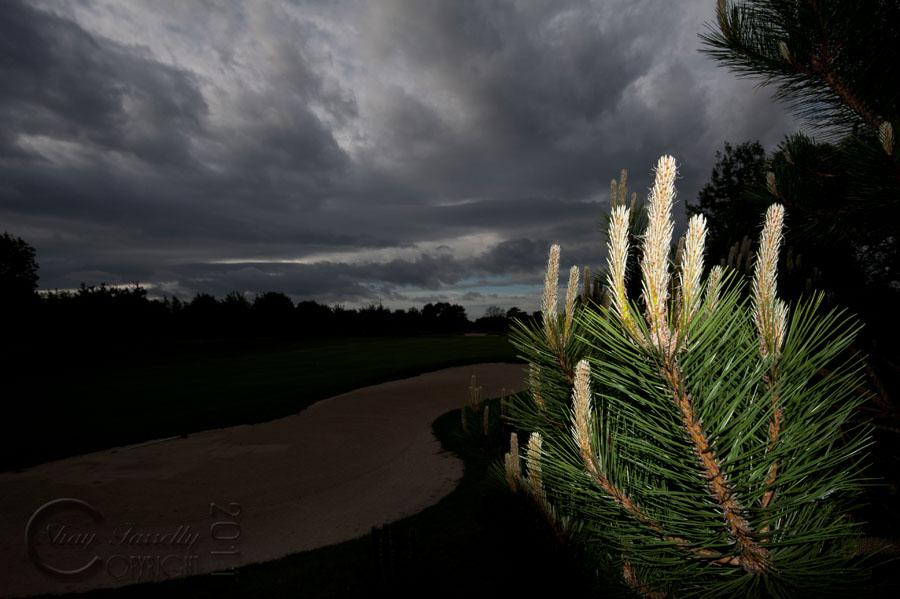 shay-golf-53.jpg