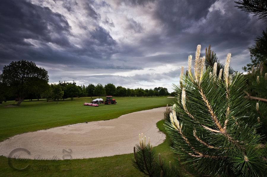 shay-golf-55.jpg