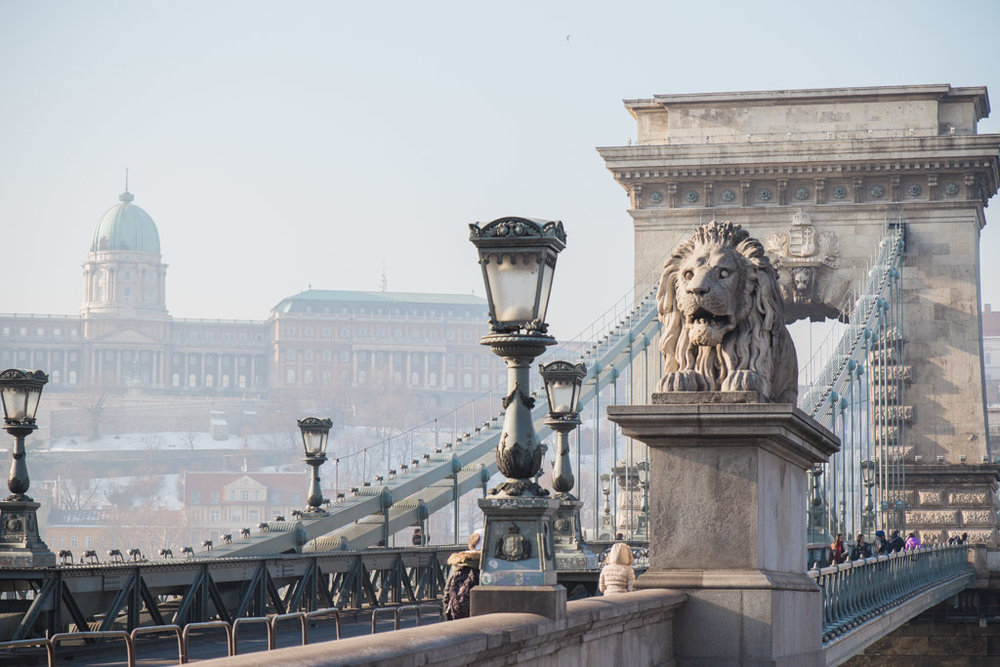 Beautiful Szechenyi bridge with Buda Castle in the background.