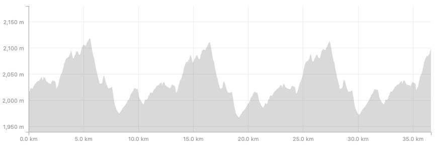 The 42km Profile