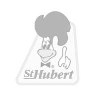 sthubert.jpg
