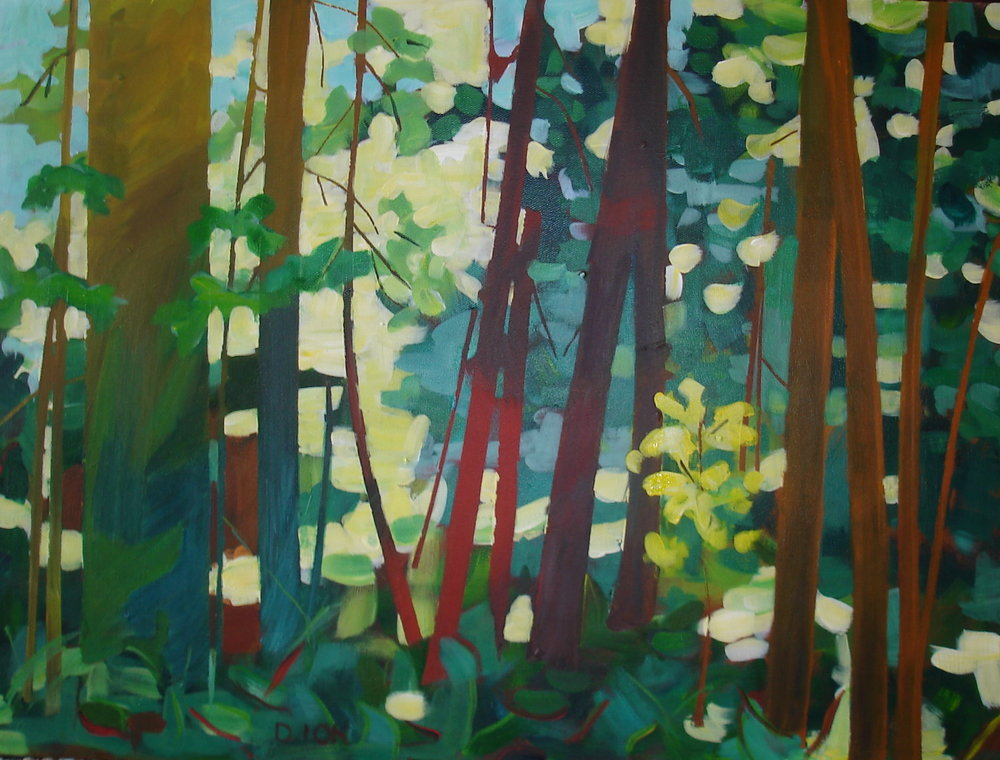 Dappled Shade 18x24 in.