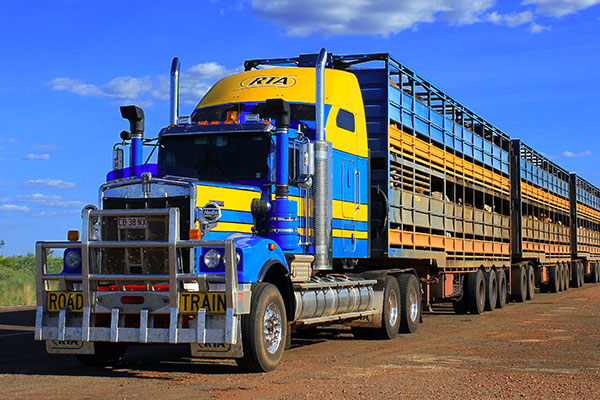 About_Us_Road_Trains_of_Australia_Cattle_Transport_Services_AU.jpg