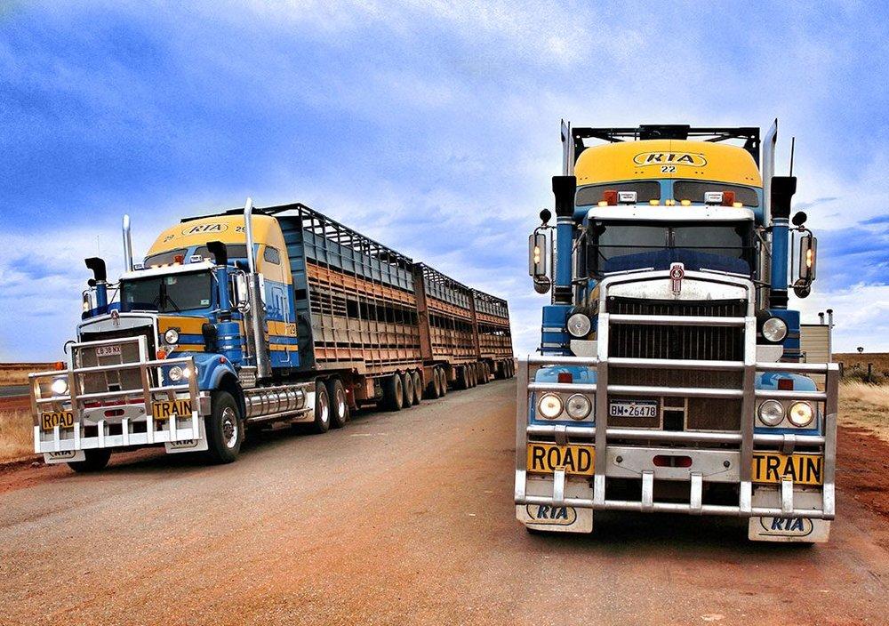 fleet_rta_australia-1024x721.jpg