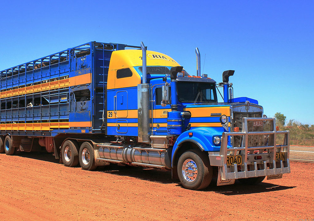 RTA-Cattle-Truck.jpg