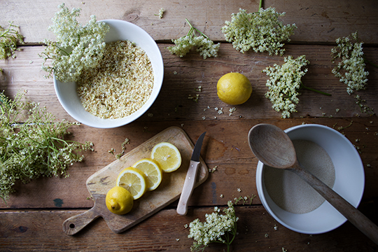elderflower-s5.jpg