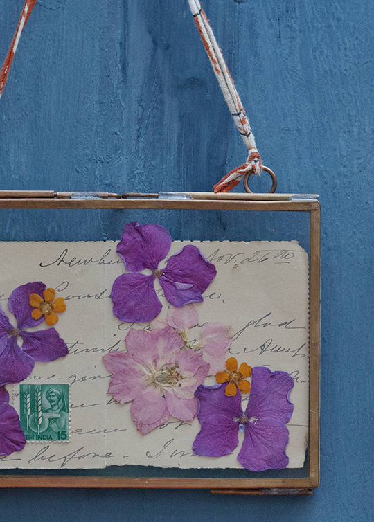 Janice-Issitt-my-fave-flower-4
