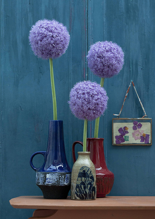 Janice-Issitt-my-fave-flower-2