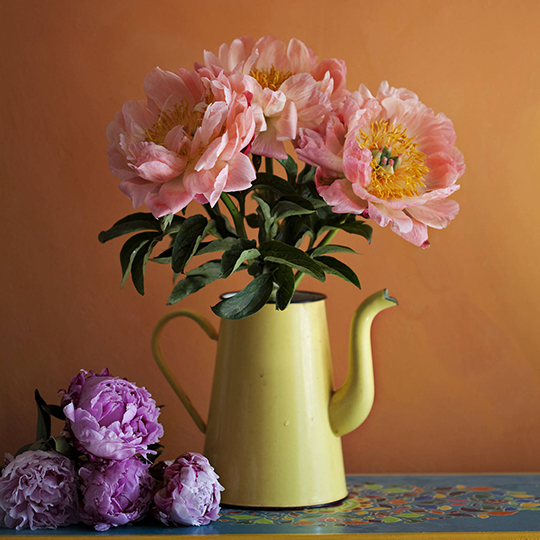 Janice-Issitt-my-fave-flower-8