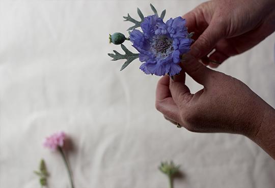 posy-buttonhole-1