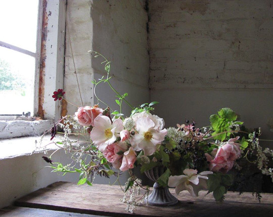 Favourite Flower - Susanne Hatwood-5090
