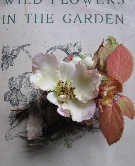 Favourite Flower - Susanne Hatwood-5254