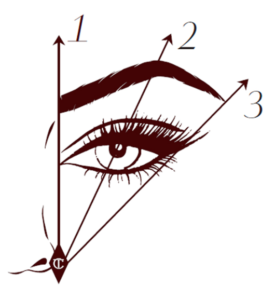 brow shaping brow waxing perfect brow shaping