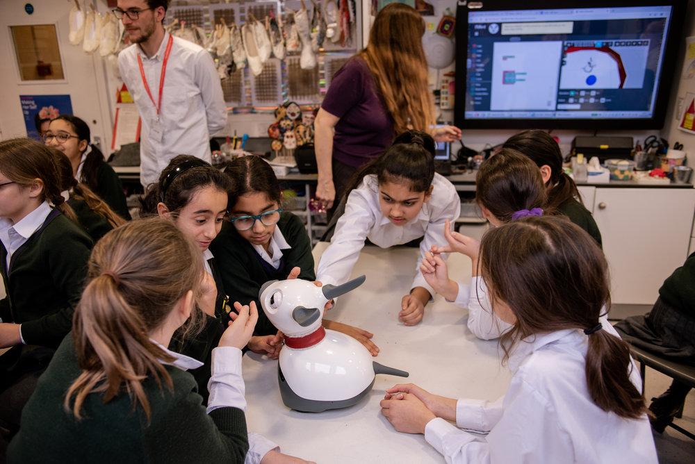 Teaching STEM with MiRo-E