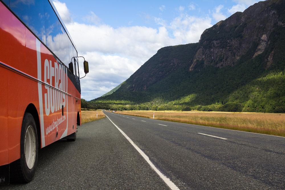 Stray Bus 001.jpg