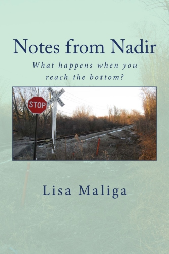 notes from nadir paperback