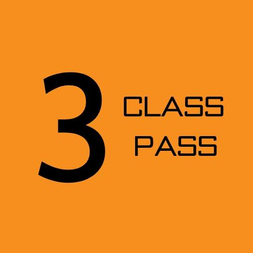 3 CLASS PASS.jpg