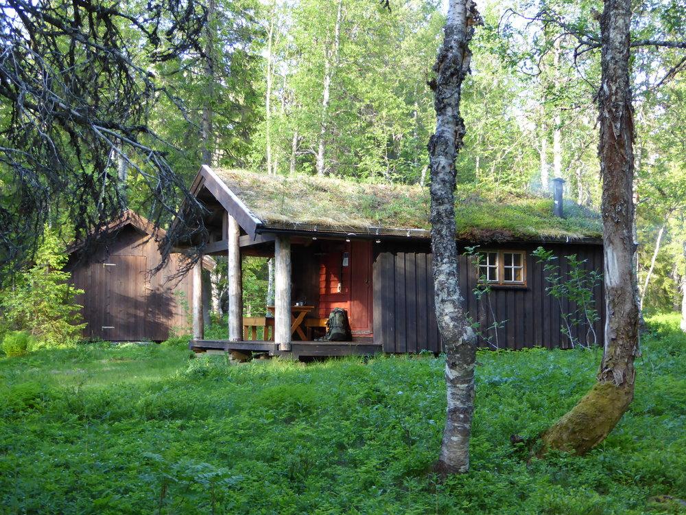 Skogstua i Namskroken i Børgefjell