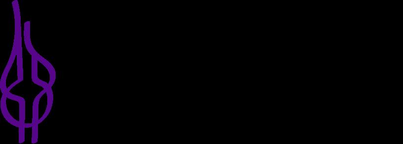 NYU CTED