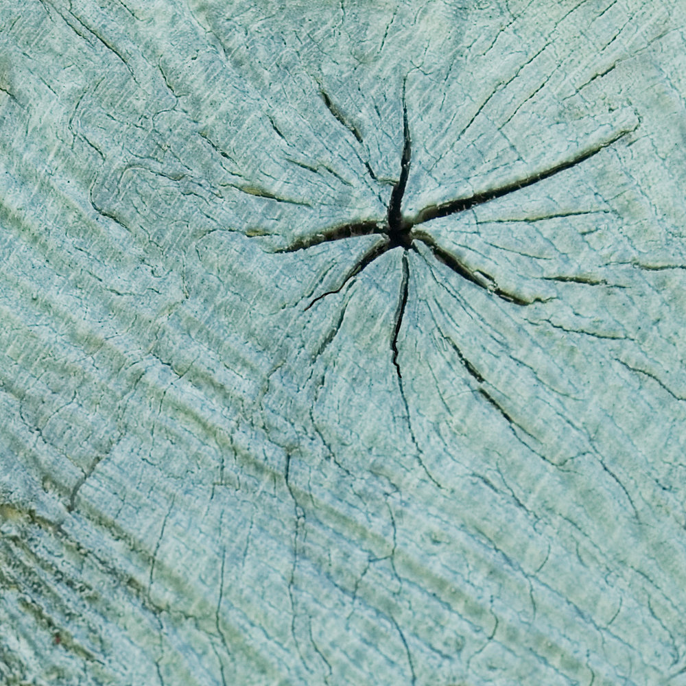 La Verriere blue oak