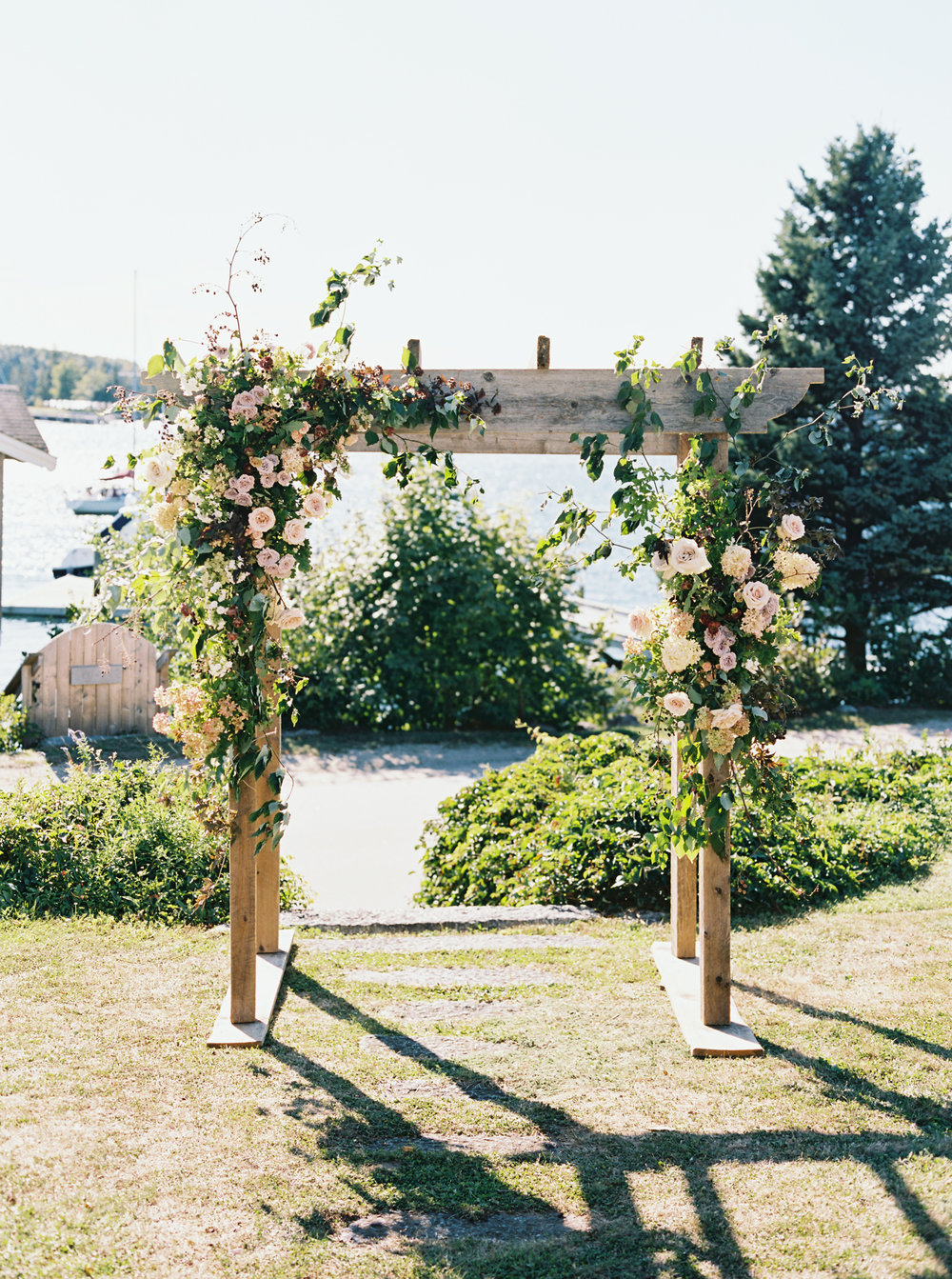 Will Reid Photo