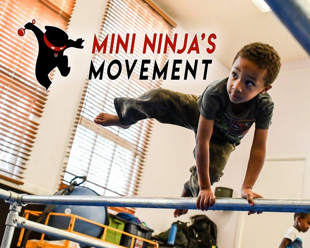 Mini+Ninjas+front.jpg