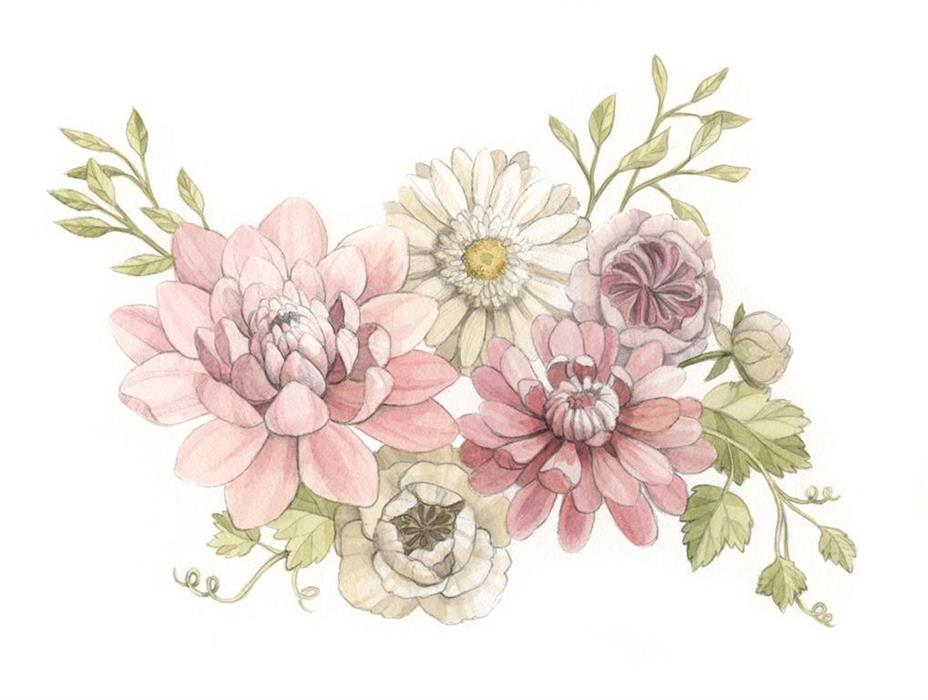 Pink Dahlia, Daisy and Rannunculus Watercolour Illustration by Alicia's Infinity - www.aliciasinfinity.com