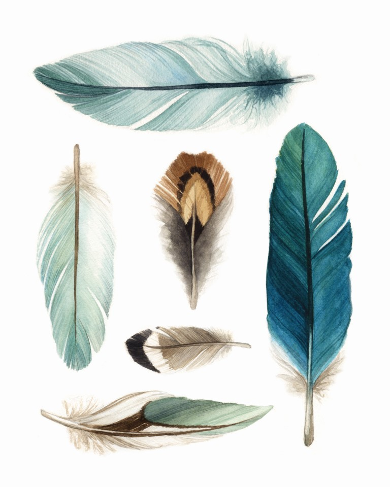 Delicate Blue and Teal Feathers Watercolour Illustration by Alicia's Infinity - www.aliciasinfinity.com