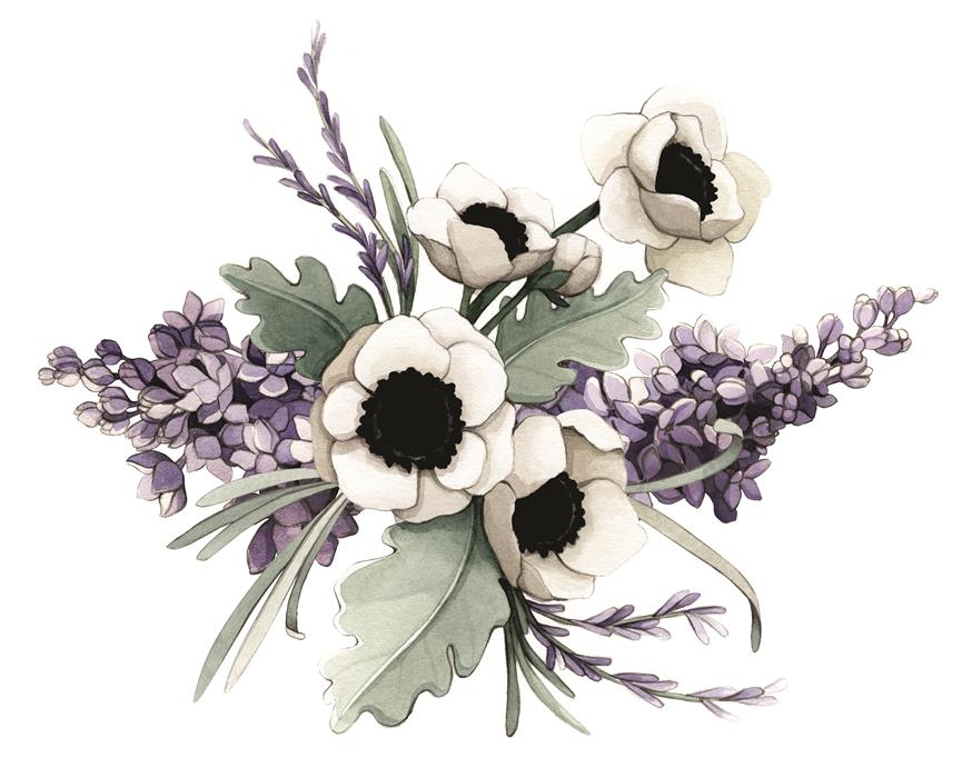 Lilac, Lavender, Poppy & Dusty Miller Watercolour Illustration by Alicia's Infinity - www.aliciasinfinity.com