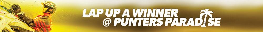 Web Banner Punter Paradise.jpg