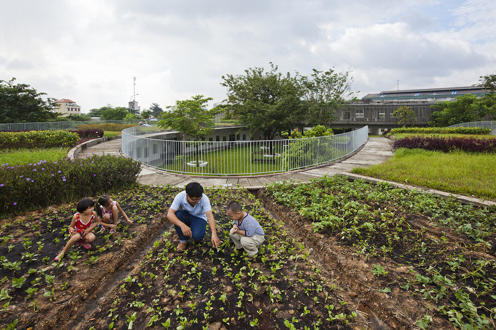 18_experimental_vegetable_garden.jpg