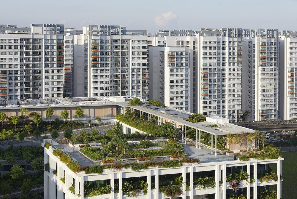 Serie_Architects_Oasis_Terraces_Singapore_©Hufton_Crow_040.jpg