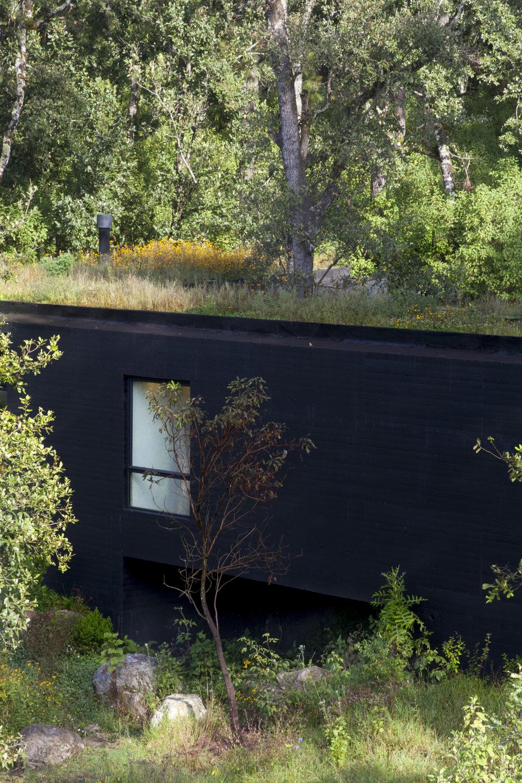 casa_roca_img_0338.jpg