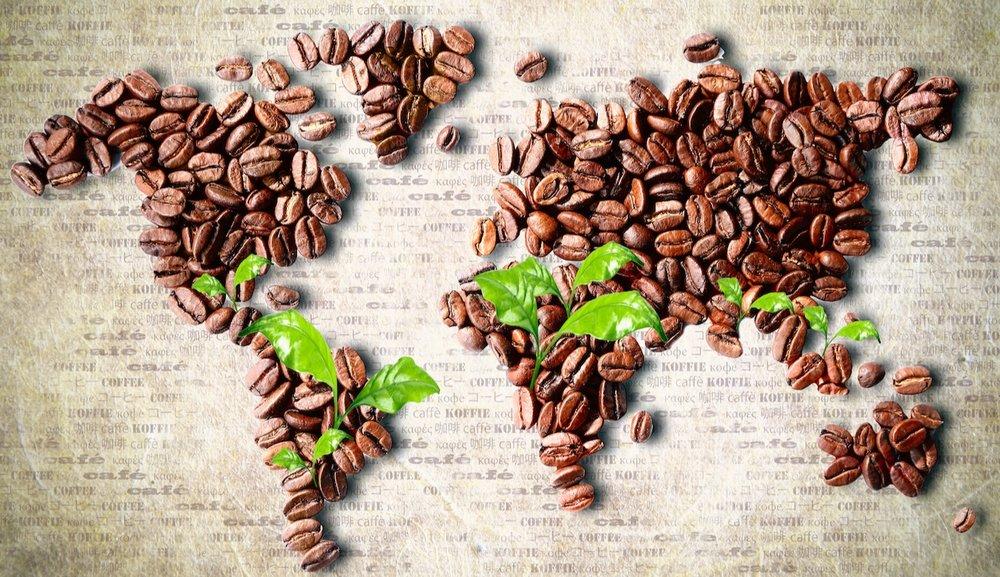 coffee+world.jpg