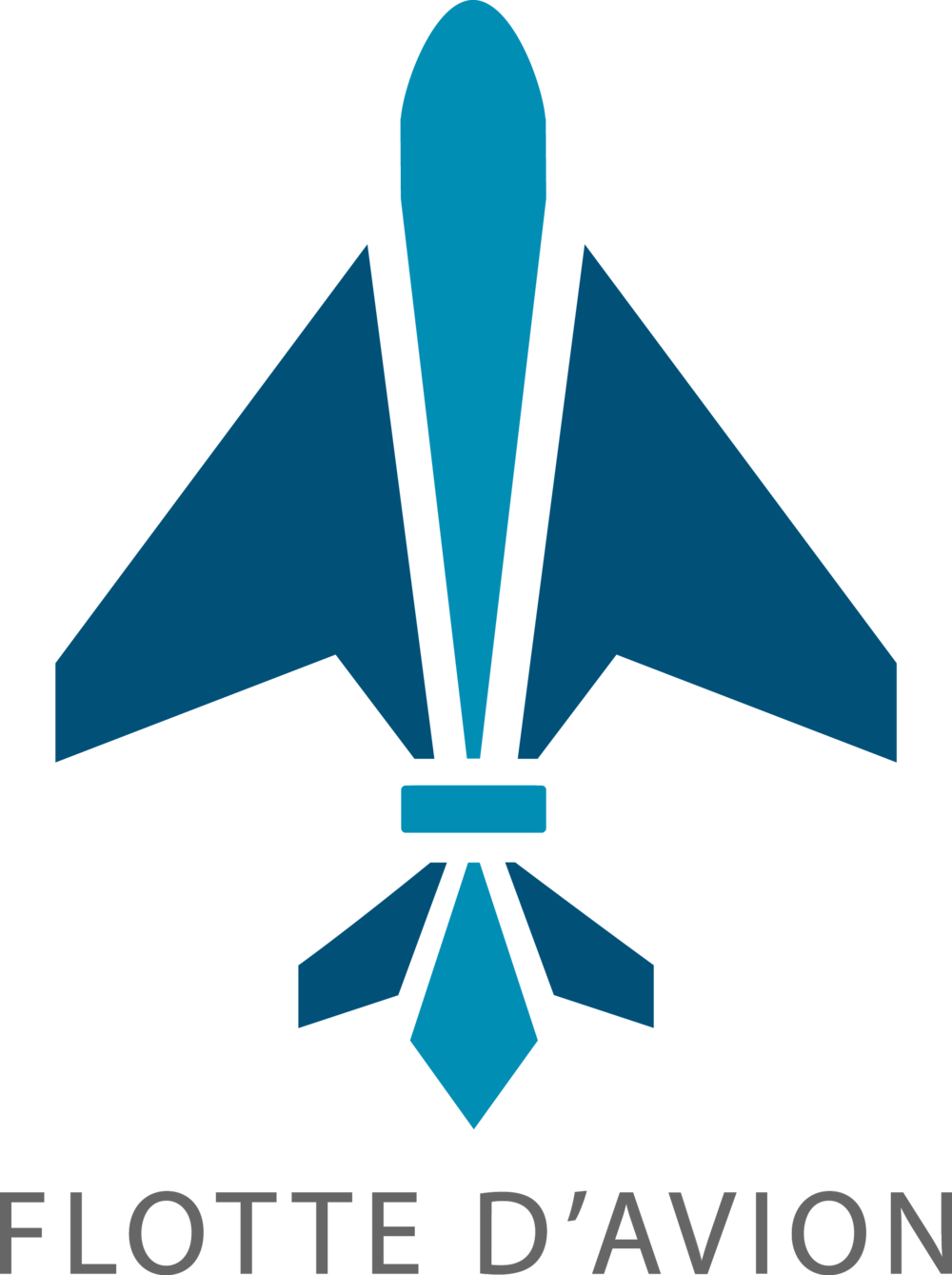 - A logo combining both the aviation and New Orleans influences of the development team of 1Fleet.- Created While Employed at GE Aviation