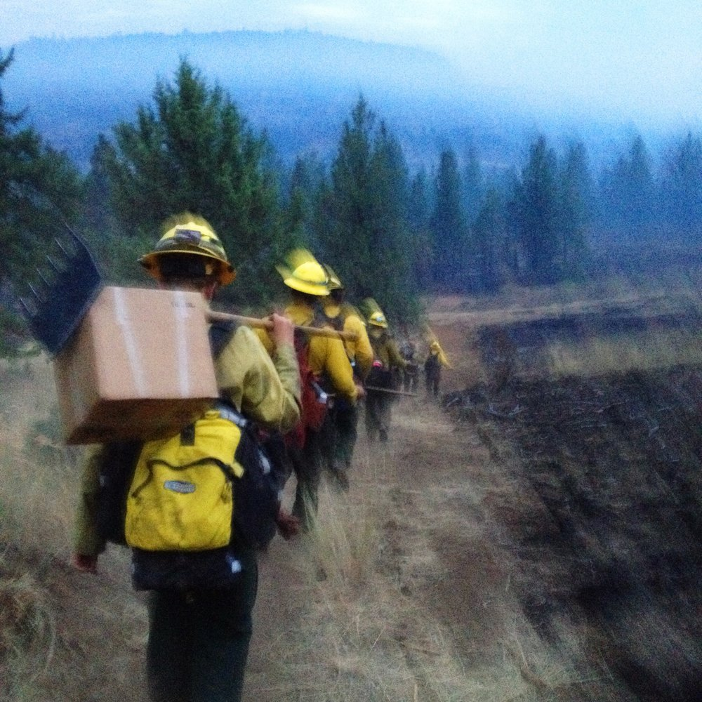 This photo makes me laugh because I must've been moving a lot when I took it, but it perfectly captured how exhausted we all were after a pretty rough night shift hiking back down to the trucks just after sunrise on a fire in Idaho 2014.