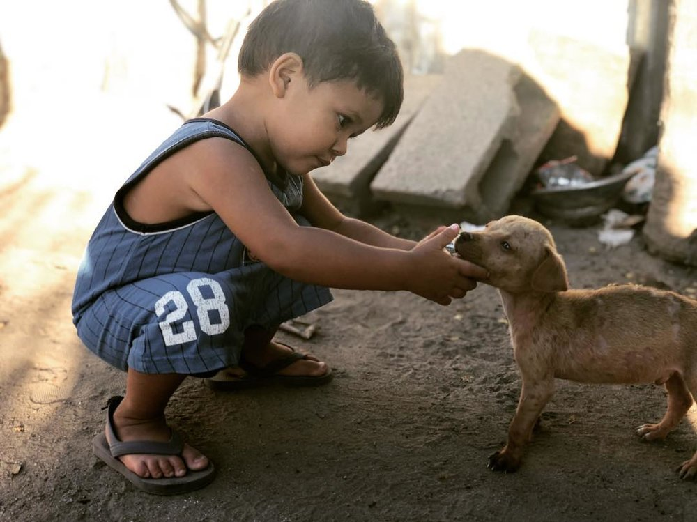 boy-with-dog.jpg