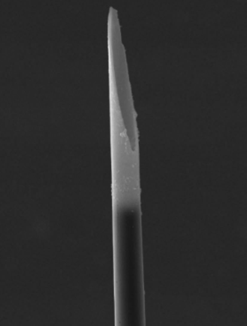 microcavity-electrodes-c.jpg