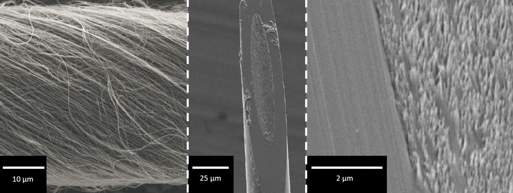 SEMs of carbon nanotube yarn material and disc electrodes.   Schmidt A.C., Wang X., Zhu Y.,  Sombers L.A.  Carbon Nanotube Yarn Electrodes for Enhanced Detection of Neurotransmitter Dynamics in Live Brain Tissue.  ACS Nano. 2013, 7: 7864-7873.