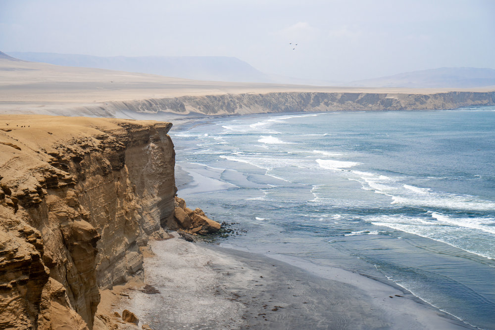 Our stop in Paracas involved going to the Paracas National Reserve.