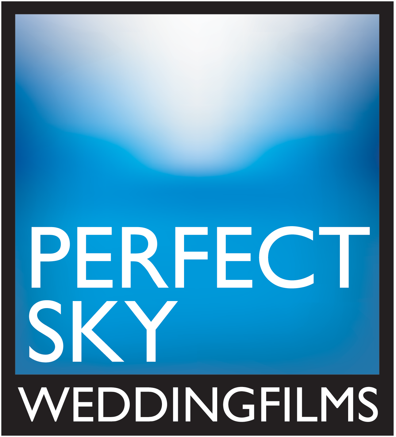 Perfect Sky Wedding Films - Orlando and Destination Wedding Video