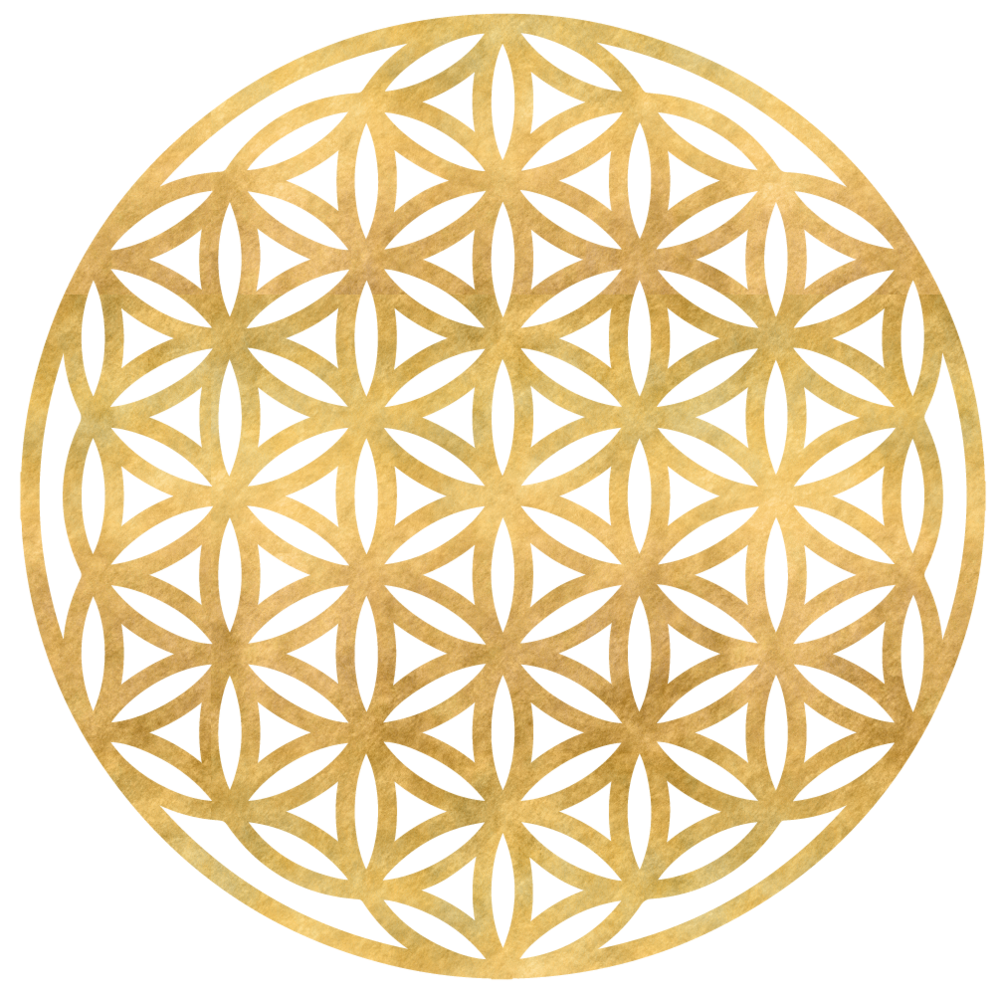 ICONS-14-FlowerOfLife.png